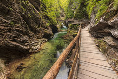 Desfiladeiro de Vintgar e trajeto de madeira, sangrados, Eslovênia Fotografia de Stock Royalty Free