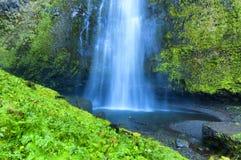 Desfiladeiro do Rio Columbia da cachoeira de Latourell Fotografia de Stock Royalty Free