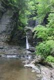 Desfiladeiro e cachoeira do vale de Watkins Imagem de Stock Royalty Free
