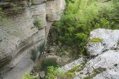Desfiladeiro na Abkhásia Foto de Stock Royalty Free