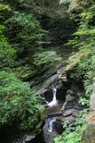 Desfiladeiro no parque estadual D do vale de Watkins (NY) Fotos de Stock