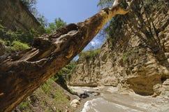 Desfiladeiro no parque nacional da porta do inferno Imagem de Stock