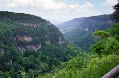 Desfiladeiros do parque estadual Geórgia da garganta de Cloudland imagens de stock