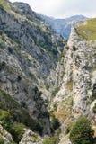 Desfiladero del Río Cares, Cabrales ( Spain ) Royalty Free Stock Photo