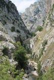 Desfiladero del Río Cares, Cabrales ( Spain ) Royalty Free Stock Images