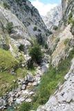 Desfiladero del Río Cares, Cabrales ( Spain ) Royalty Free Stock Image