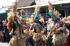 Desfile cultural Imágenes de archivo libres de regalías