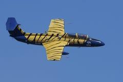 Desfile de aviones de L-29 Delfin Foto de archivo libre de regalías