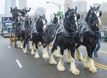 Desfile de Chicago St Patrick imagenes de archivo