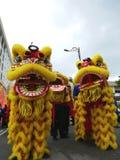 Desfile de la danza de león Fotos de archivo libres de regalías