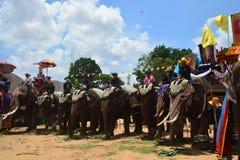 Desfile de la ordenación en festival de la parte posterior de Elephant's Imágenes de archivo libres de regalías