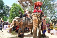 Desfile de la ordenación en festival de la parte posterior de Elephant's Fotografía de archivo libre de regalías