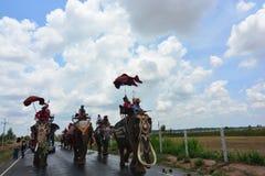 Desfile de la ordenación en festival de la parte posterior de Elephant's Fotografía de archivo