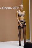 Desfile de moda Autumn Lingrie da expo de Moscou Lingrie e meias Imagens de Stock