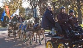 Desfile del caballo de París Imagen de archivo libre de regalías