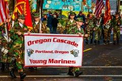 Desfile 2015 del día de veteranos Fotografía de archivo