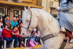 Desfile Fiestas Mexicanas. Matamoros, Tamaulipas, Mexico - March 02, 2013, Desfile Fiestas Mexicanas is part of the Charro Days Fiesta - Fiestas Mexicanas, A bi stock image