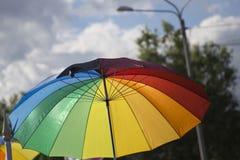 Desfile gay en el parque fotografía de archivo