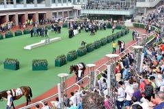 Desfile Ring Horse en el club de Racng del caballo de Hong-Kong Fotografía de archivo