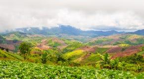 Desflorestamento para a agricultura de montanhas Fotografia de Stock Royalty Free