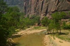 Desfuladero piacevole con un fiume sinuoso pieno degli stagni di acqua in cui potete prendere un buon bagno nel parco di Zion Via immagine stock
