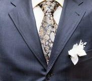 Desgaste formal do negócio com laço e terno Foto de Stock Royalty Free