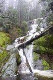 Deshielo en el parque nacional de Yosemite Fotografía de archivo