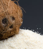 Desiccated coconut and whole coconut Royalty Free Stock Photography