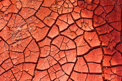 Desiccated Red Brickearth. Desiccated, parched Red Brickearth with drying Cracks - Symbolic for Water Deficiency, Water Shortage Stock Photography