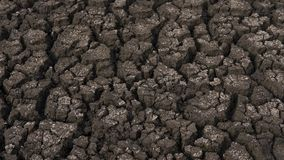 Desiccated soil showing cracks and dryness due to drought affecting farmland, after insufficient precipitations. Background horizontal shot of farmland damaged Royalty Free Stock Photo