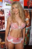 Desiderio di Lori al Pin sull'Expo Glamourcon 38. LASSISMO di Radisson, Los Angeles, CA 06-10-06 Immagine Stock