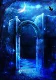 Desiderio di notte Immagini Stock
