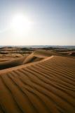 Desierto árabe -3 Imágenes de archivo libres de regalías