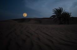 Desierto árabe contra la luna enorme Foto de archivo