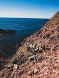 Desierto áspero de la costa francesa fotos de archivo libres de regalías
