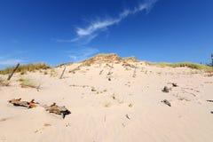 Desierto Foto de archivo libre de regalías