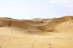 Desierto Imágenes de archivo libres de regalías