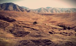 Desierto Fotos de archivo libres de regalías