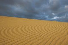 Desierto Australia de Sanddune Fotos de archivo