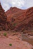 Desierto Barranco-bermellón de los acantilados de AZ-Paria Fotografía de archivo libre de regalías