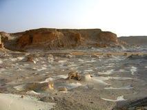 Desierto blanco Foto de archivo libre de regalías