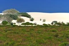 Desierto blanco, parque nacional de Nambung, occidental del sur Imagenes de archivo