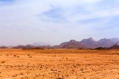 Desierto caliente sin vida Fotografía de archivo libre de regalías