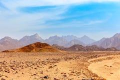 Desierto caliente sin vida Foto de archivo libre de regalías