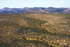Desierto casi sin vida imágenes de archivo libres de regalías