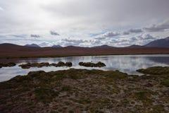 Desierto chileno fotografía de archivo libre de regalías
