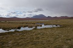 Desierto chileno imagen de archivo