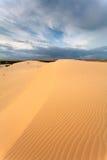 Desierto con la arena amarilla Fotografía de archivo libre de regalías