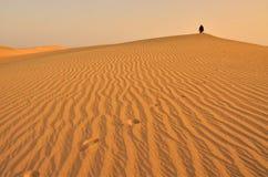 Desierto con las dunas Imágenes de archivo libres de regalías