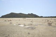 Desierto con las montañas Fotografía de archivo libre de regalías